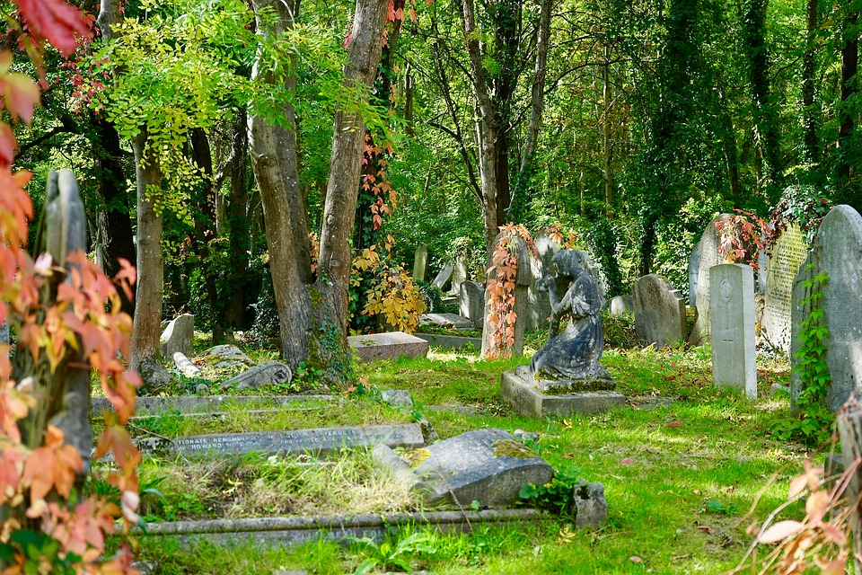 Funeral directors can help you plan your funeral